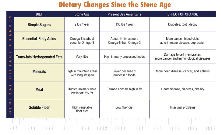 Dietary Changes SInce the Stone Age